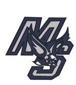 south-logo-2013
